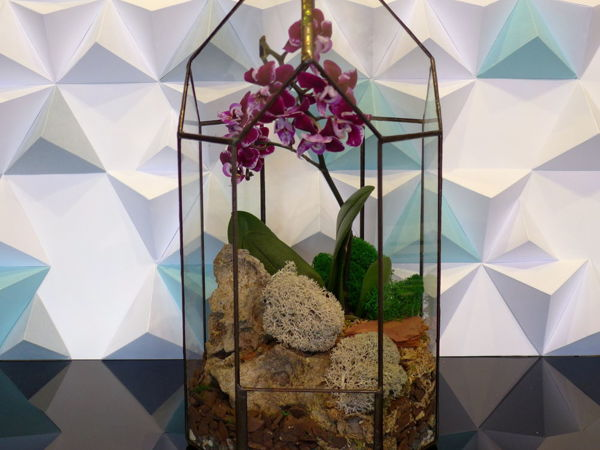 How To Build An Orchid Greenhouse