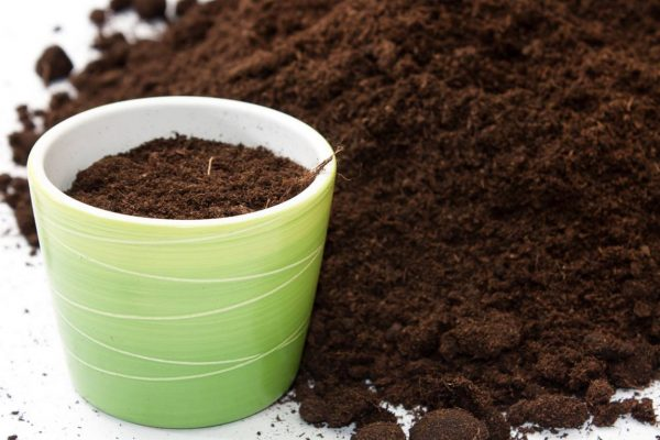 list of best soil to use for houseplants 1