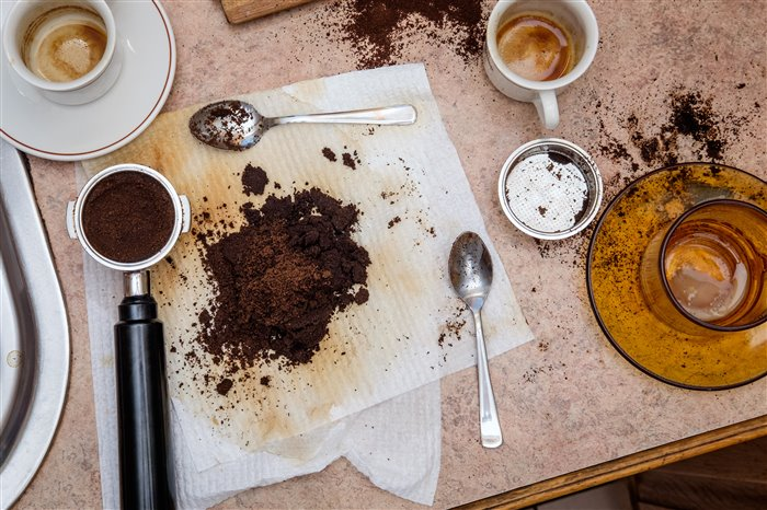 use coffee grounds on plants