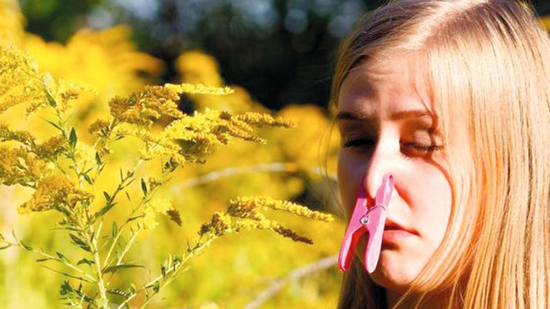 do orchids have pollen allergy