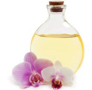 do orchids produce oil
